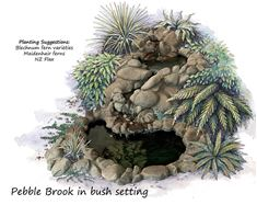 Picture of Pebble Brook