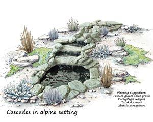 Picture of Cascades in alpine colour