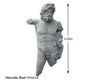 Picture of Hercules Bust
